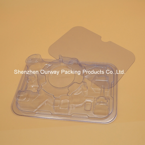 Blister Tray with Back Panel